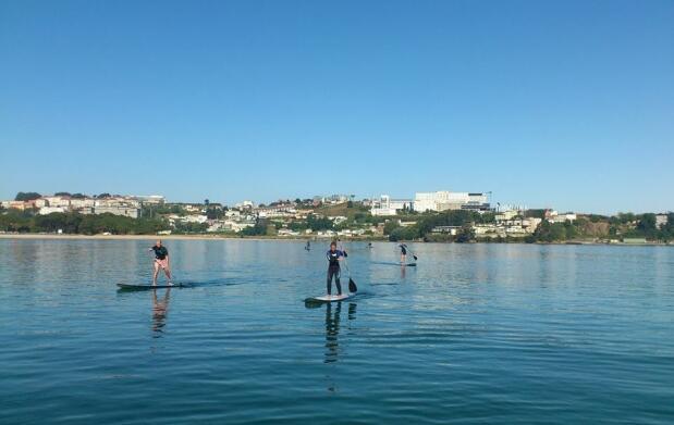 Clase de iniciación al paddle surf 2h