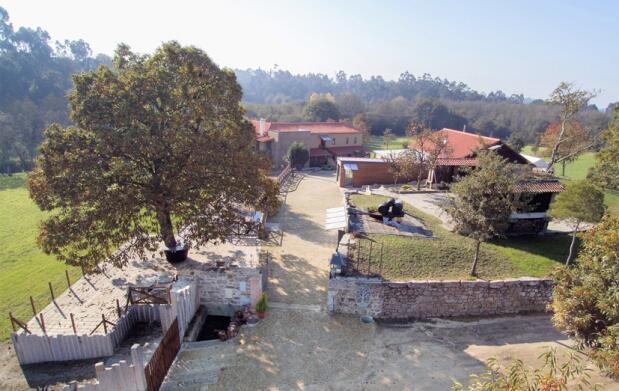 Escapada con encanto en fantástica casa rural. Con opción a comida o cena. Portugal.