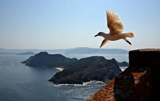 Billete de barco a las Islas Cíes